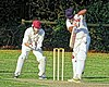 Great Canfield CC v Hatfield Heath CC at Great Canfield, Essex, England 66.jpg