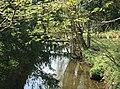 Great Stour River, Worten - geograph.org.uk - 403370.jpg