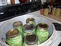 Green beans in a pressure cooker ready to be processed.jpg