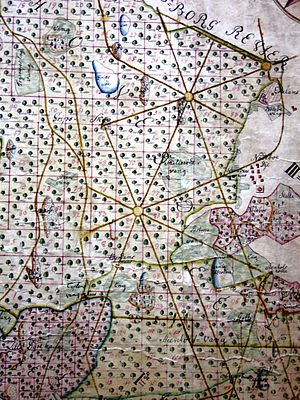 Par force hunting landscape in North Zealand - Detail from old map showing the par force hunt road network in Gribskov with two eight-way junctions
