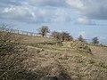 Grims Ditch - panoramio - ian freeman (1).jpg