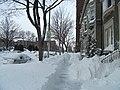 Groundhog Day 2011 Blizzard (5413822808).jpg