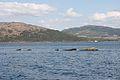 HMS Port Napier wreck 20.jpg