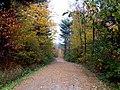 Happy trail - panoramio.jpg