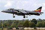 Harrier (5133031168).jpg