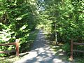 Harrisville state park path 02.jpg