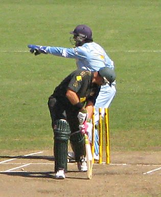 Indian wicketkeeper M. S. Dhoni appeals for a stumping against Australian batsman Matthew Hayden. Hayden and Dhoni.jpg