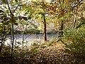 Herbst am Kuthfließ bei Eisenhüttenstadt - panoramio (3).jpg
