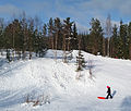 Hiihtomaa - sledding hill 2.jpg