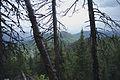 Hiking to Malinovaya (21195263786).jpg
