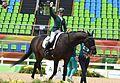 Hipismo campeonato individual misto grau Ia na Paralimpíada Rio 2016 (29702500485).jpg