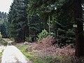 Historischer Grenzweg, Hier war die Grenze zwischen dem Großherzogtum Baden und dem Königreich Württemberg. - panoramio (1).jpg