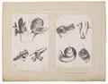 Homo sapiens - 1700-1880 - Print - Iconographia Zoologica - Special Collections University of Amsterdam - UBA01 IZ19600097.tif