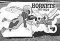 Hornet mascot, Grubbs Vocational College (10005988).jpg