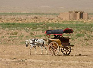 Horse and buggy, Afghanistan