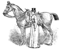Horsemanship for Women 108.png