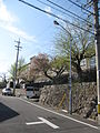 Hoshizaki Castle 009.JPG