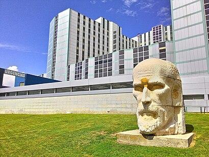 Cómo llegar a Hospital Ramón Y Cajal en transporte público - Sobre el lugar