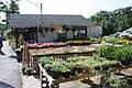 Howe's Farm and Garden - panoramio (10).jpg