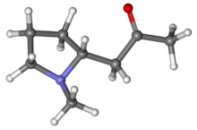 Ball-and-stick model of hygrine molecule