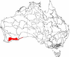 Mallee Woodlands and Shrublands - Map of smaller IBRA defined biogeographic Mallee region.