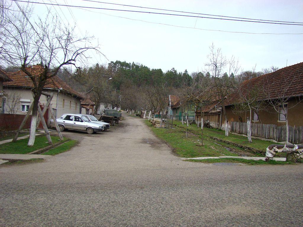 IacobiniAR (8).JPG