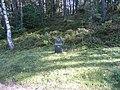 Ignalina, Lithuania - panoramio (10).jpg