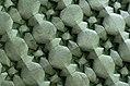 Ilan Garibi - Origami - Hidden Garden.jpg