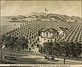 Illustrated album of Alameda County, California; its early history and progress-agriculture, viticulture and horticulture-educational, manufacturing and railroad advantages-Oakland and (14758619134).jpg