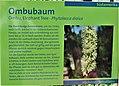 Informationstafel Röhrensee 14.jpg