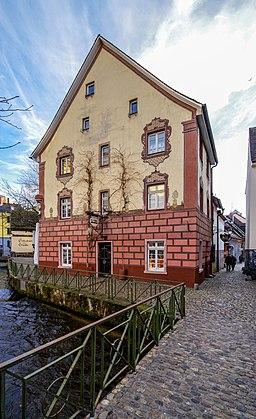 Insel in Freiburg im Breisgau