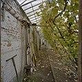 Interieur, oude muurkas, fruitmuur met latwerk, druivenranken, tuingereedschap - Beesd - 20404838 - RCE.jpg
