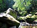 Irrel Wasserfälle 10+.jpg