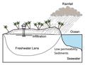Island water basin freshwater lens.png
