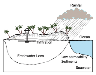 Lens (hydrology) convex layer of fresh groundwater that floats on top of denser saltwater