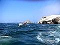 Islas Ballestas - panoramio (5).jpg