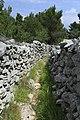 J32 272 Weg zwischen Trockenmauern.jpg
