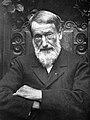 Jacques Gabriel Bulliot (1817-1902).jpg