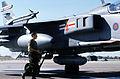 JaguarGR3 41Sqn RAF 1999.jpeg