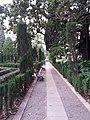 Jardín de Monforte 72.jpg