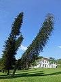 Jardin botanique de Kandy-Sri Lanka (1).jpg