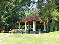 Jardin botanique de Kandy-Sri Lanka (3).jpg