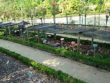 Parc du Thabor — Wikipédia