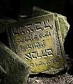 Jewish cemetery Sobienie Jeziory 25945396.jpg