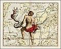 Johannes Hevelius - Serpens and Serpentarius.jpg