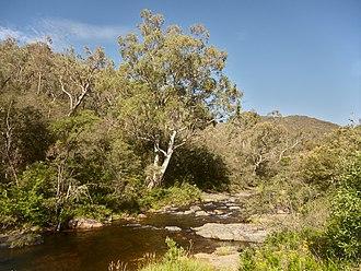 Talbingo, New South Wales - Jounama Creek, near Talbingo