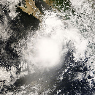 Tropical Storm Julio (2008) Pacific tropical storm in 2008