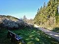 Jungbrunnental - panoramio.jpg