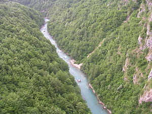 Српски / Srpski: Kanjon Tare