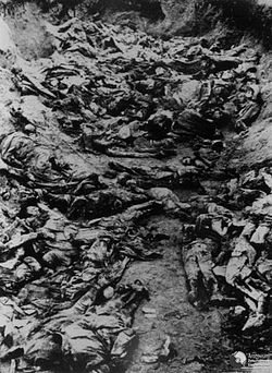 Katyn Massacre - Mass Graves 2.jpg